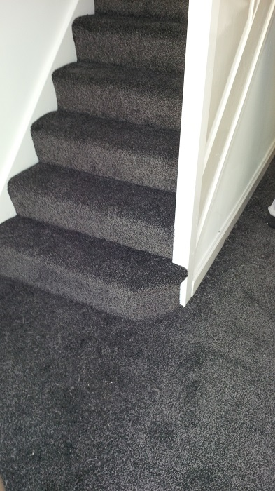 Gallery Longstaffs Carpets